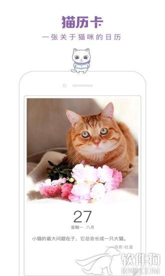 一日猫app猫咪社区