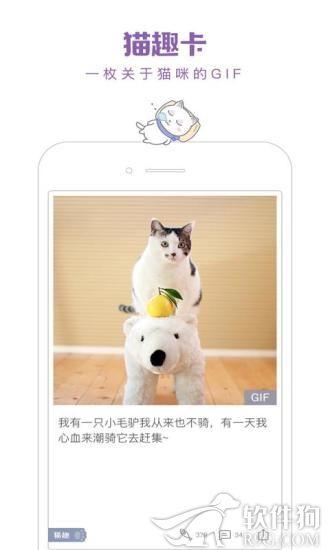 一日猫app撸猫神器
