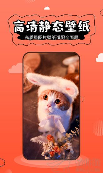 壁纸精灵app