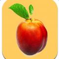 油桃直播app免费版
