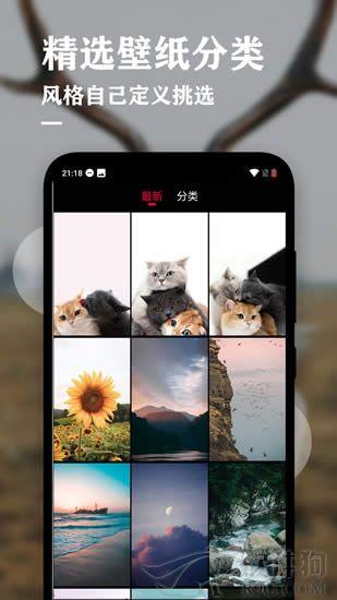 手机动态壁纸软件安卓最新版下载
