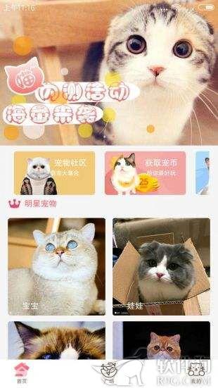 猫咪软件app安卓手机客户端下载