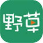 野草视频官方版污app