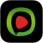 西瓜播放器app下载安装地址