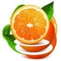 橙子私人播放器